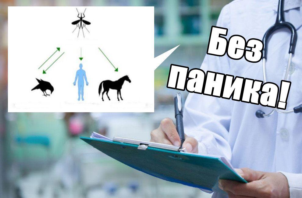 Случаи на Нилска треска регистрираха в България