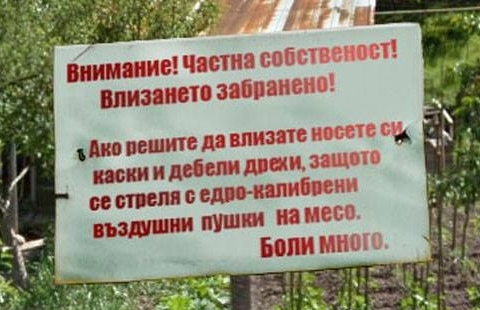ГРОЗДОБЕР С ПУШКИ