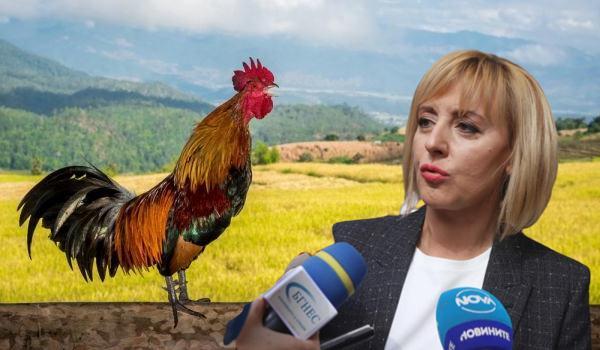 Обществен натиск с Мая Манолова